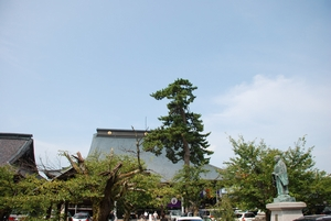photo10081501.jpg