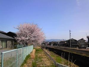 photo110417.jpg